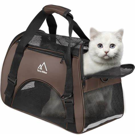 PET CHECK BLOG - Soft carrier, cat inside