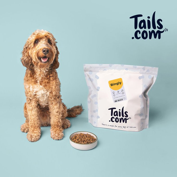 PET CHECK BLOG - Tails.com BANNER