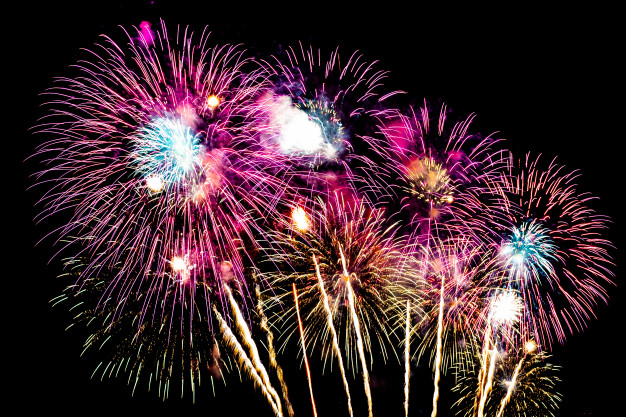 PET CHECK BLOG - Night firework display