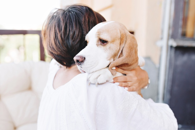 Dog looking anxious being held by woman