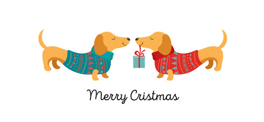 2 dogs with present Christmas card