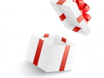 PET CHECK BLOG - Empty Gift Box