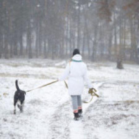 PET CHECK BLOG Lady walking her dog
