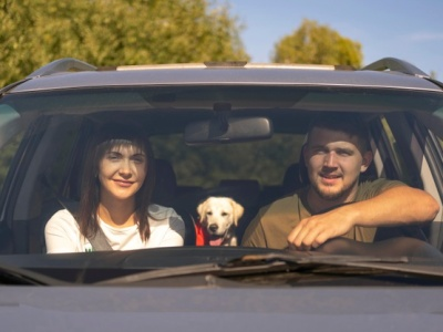PET CHECK BLOG - Couple in car with dog travelling