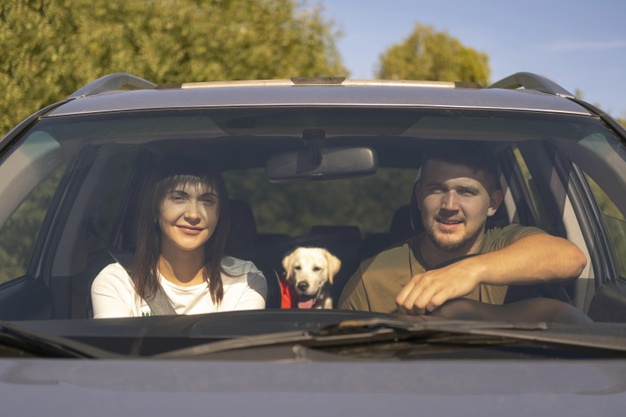 Couple in car with dog travelling