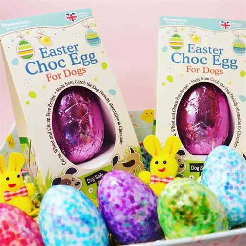 Easter egg for dog