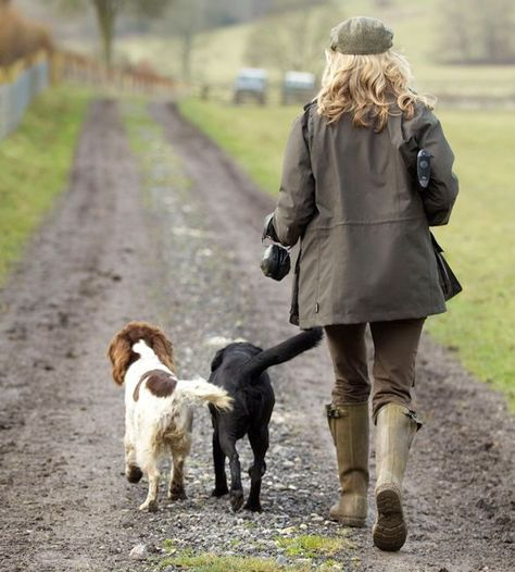 Lady walking 2 gun dogs