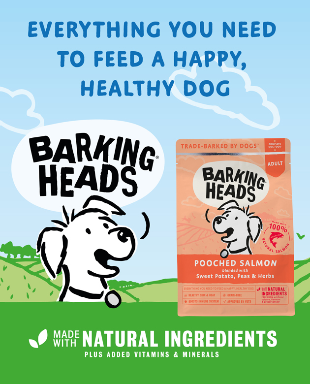 PETCHECK BLOG - Barking Heads Banner