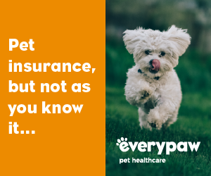 Everypaw Pet Insurance Banner