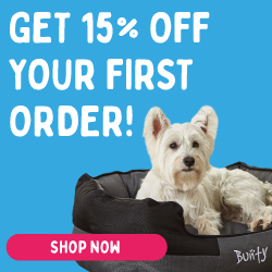 Bunty Pet Supplies Banner