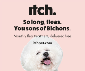 ItchPet Flea Banner