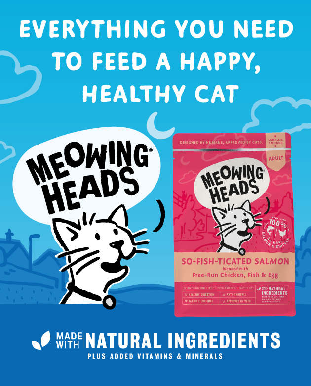 PETCHECK BLOG - Meowing cats banner
