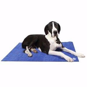 PET CHECK UK Scruff cooling mat