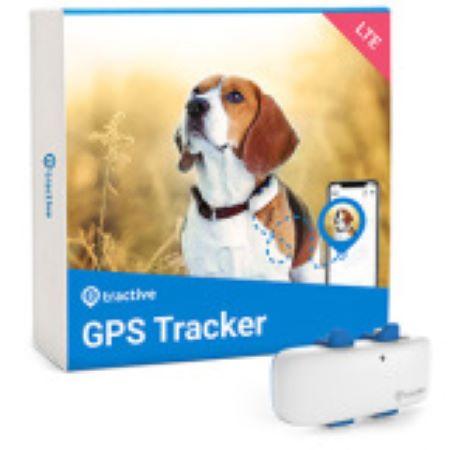 PET CHECK BLOG - GPS Pet activity tracker