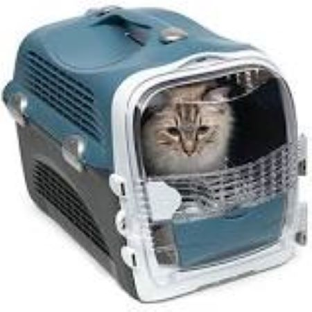 PET CHECK BLOG - Catit crate with cat in