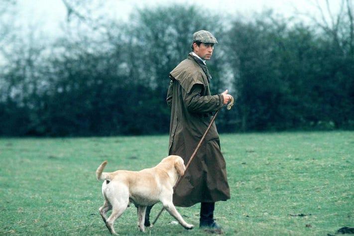 PET CHECK BLOG Prince Charles out dog walking
