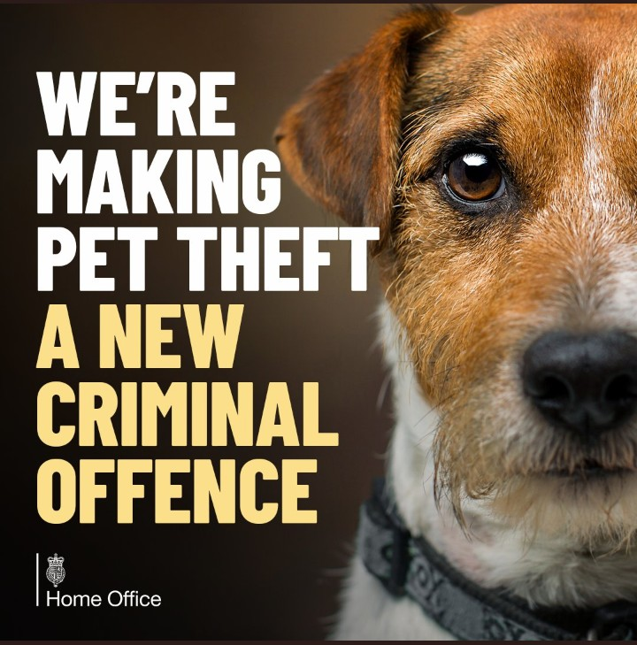 PET CHECK - BANNER - Home office Pet Theft