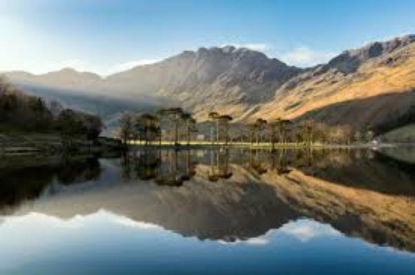 PET CHECK BLOG - Lake District Deals